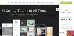 Thème WordPress Avada